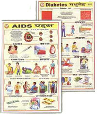 Food Charts, Detailed Human Physiology Charts, Human Anatomy Plastic ...